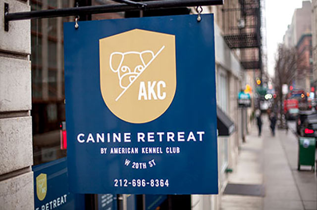 Chelsea Location Canine Retreat