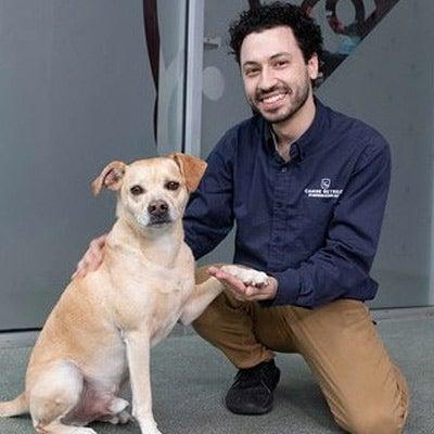 Tribeca - AKC Canine Retreat