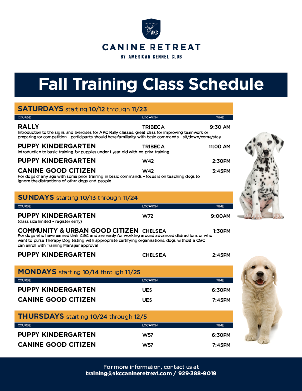 Fall Training Classes at Canine Retreat